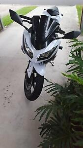 Kawasaki Ninja 300 (LAMS approved) Everton Park Brisbane North West Preview