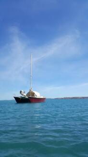 Catamaran. 40foot. Wharram. All fibreglass.