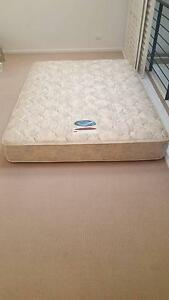 QUEEN MATTRESS - FREE FOR URGENT COLLECTION Petersham Marrickville Area Preview