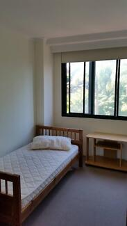 looking 1 girl to stay in master room,share with 1 other girl Pyrmont Inner Sydney Preview