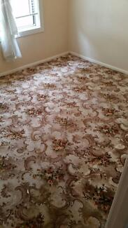 80+ sqm meters of great condition carpet Bardwell Park Rockdale Area Preview