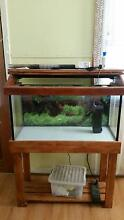 3 foot fish tank Cardiff Lake Macquarie Area Preview