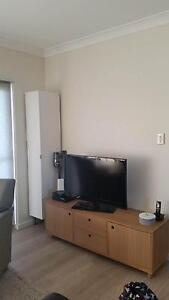 ZAC Storage Unit/Entertainment Unit Marrickville Marrickville Area Preview