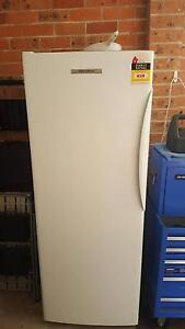 Fisher and Paykel upright Freezer with draws Blackbutt Shellharbour Area Preview