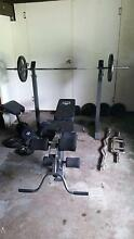 Gym bench and weight set collection Loganholme Logan Area Preview