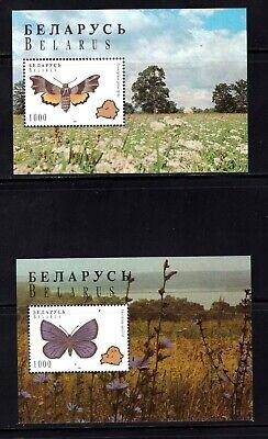Belarus Souvenir Sheets #139 & 140, MNHOG, XF, topical, Butterflies