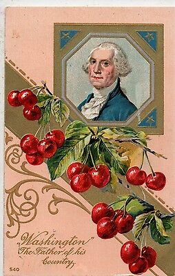 Portrait of George Washington & Cherries Vintage Postcard