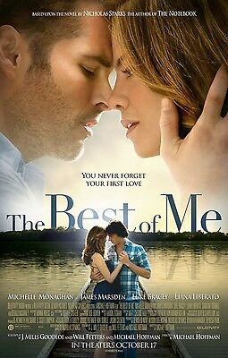 The Best of Me (2014) Movie Poster (24x36) - James Marsden, Michelle