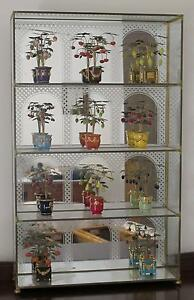 COLLECTION OF 11 MINIATURE FRUIT TREES FROM THE HOUSE OF FABERGE Wembley Cambridge Area Preview