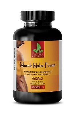 Demonstrate Strong Anti Aging Properties   Muscle Maker Power   Dhea Powder