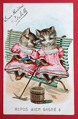 AK KATZE 1905 Katzen in Menschengestalt auf der Bank ( 7562 ()