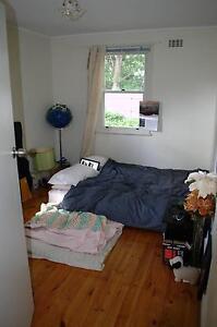 Housemate wanted in handy Narrabundah - $150/week Narrabundah South Canberra Preview