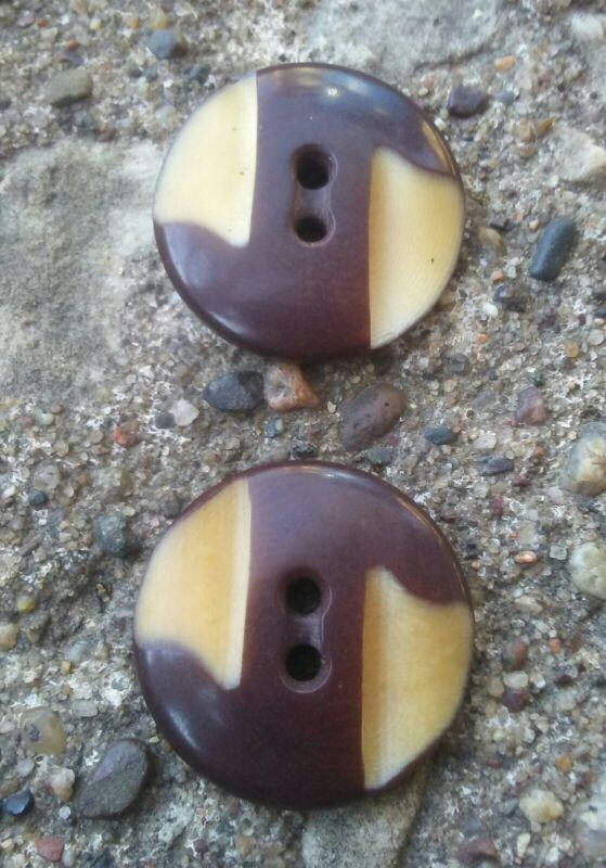 Vintage Pair of Carved Vegetable Ivory Buttons.