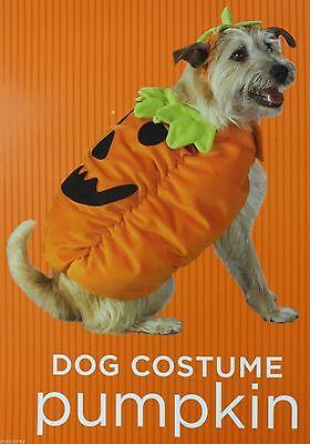 Halloween Orange Pumpkin Pet Dog Costume Size XSmall 2-6 lbs 6-9 in NWT