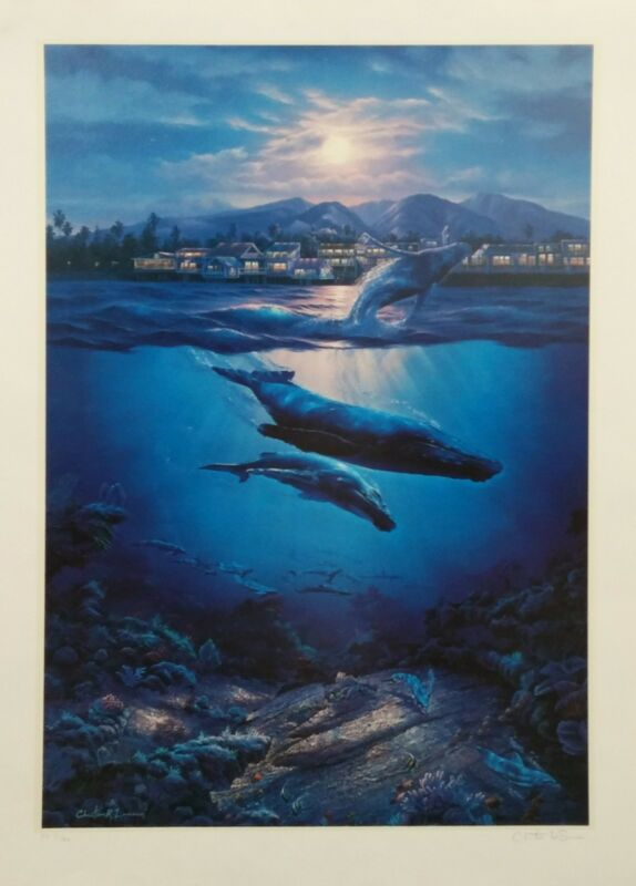 "Christian Lassen ""return To Paradise"" Whales 