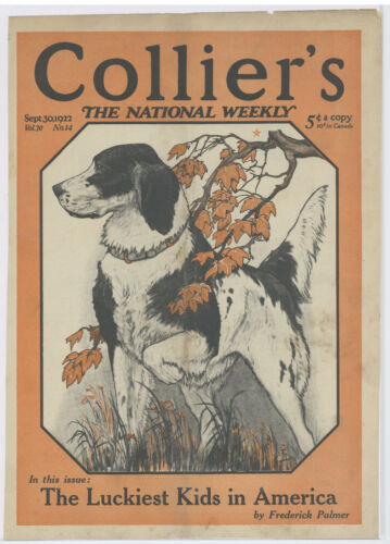 1922 Colliers Magazine Cover: Hunting Dog Pointer? Featured Cover Artwork