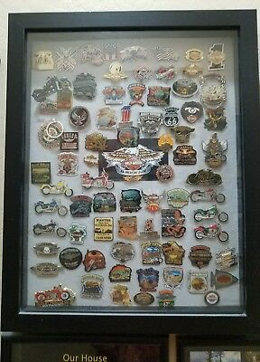 Harley Davidson Collectible Pins In A Display Case