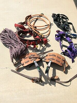 Tree Trimming Lot Weaver 1036 Md Climbing Saddle Climb Right 9862-t Spikes More