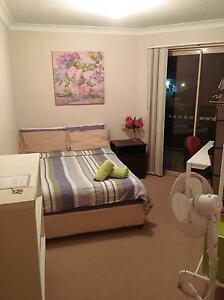 Double rooms in Lutwyche for single or couple Lutwyche Brisbane North East Preview