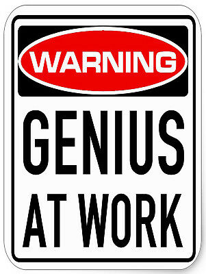 "Genuis At Work, Retro metal Sign/Plaque, Gift, Home, 10"" x 8"" Large"