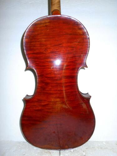 """Old Vintage Antique """"E. Reinhold Schmidt - Amati"""" 1 Pc. Back Full Size Violin NR"""