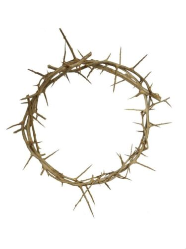 """6-8"""" Authentic Jesus Crown of Thorns Replica from Jerusalem Israel Holy Land"""