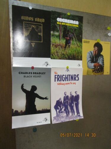 DAPTONE RECORDS Lot Of 5 PROMO POSTERS BUDOS BAND CHARLES BRADLEY FRIGHTNRS SOUL