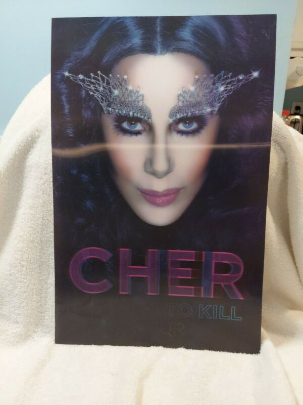 Cher Dressed To Kill Concert Tour Hologram 3D Plastic Poster 11 by 17 Great Look