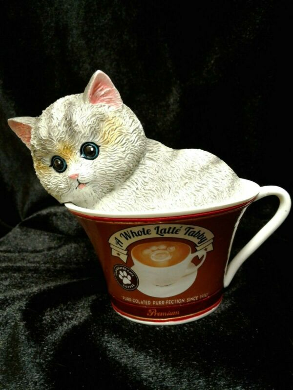 """Kayomi Harai """"Coffee Cats"""" - A WHOLE LATTE TABBY - Kittens In Coffee Cup"""