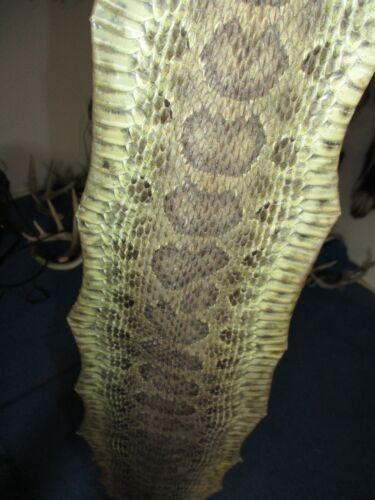 rattlesnake skin prairie rattle snake hide DRY TANNED wrap pen blanks 50 in J3