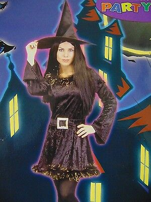 Witchy Witch Costume Women's Halloween Party City Exclusive With Hat Medium #N22