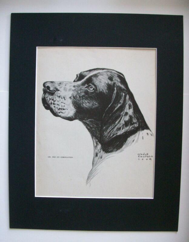 Pointer Champion Dog Print Gladys Emerson Cook Bookplate 1945 11x14 Matted
