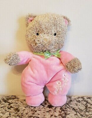 Teddy Bear Outfit For Baby (Carters THANK HEAVEN FOR LITTLE BABIES Teddy Bear Pink Outfit Plush)