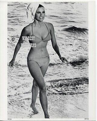 Foto Sexy Beine (Raquel Welch Vintage Original Foto Sexy Bare Bauch Knöpfe n Beine Barfuss)