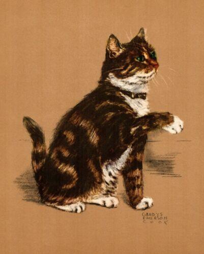 1941 Antique Tabby Cat Print Vintage Gladys Emerson Cook Tabby Cat Art 3485j