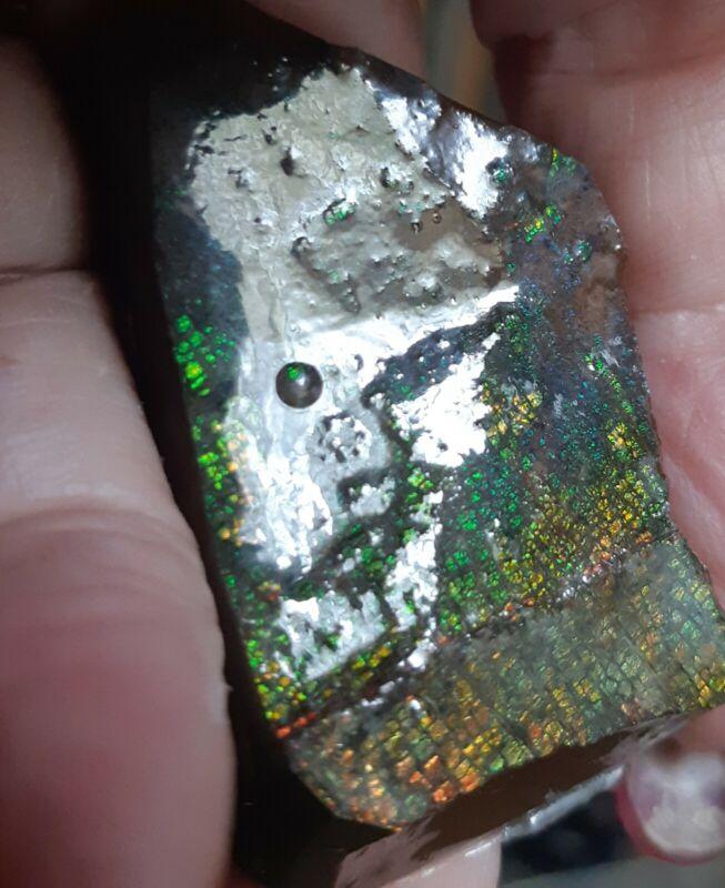 ammonite ammolite Display piece 46x29mm