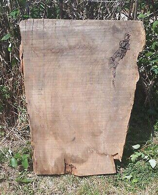 LebaneseCedar wood - Large Wood Block