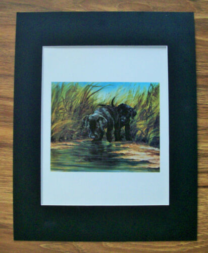 Print Black Lab Dog Tara Moore Pups Water Adventure Bookplate 1982 11x14 Matted