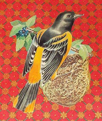 """VTG DENNISON SPRING ORIOLE BIRD NEST DIECUT CARDBOARD DECORATION 7"""" MINT NOS #4"""
