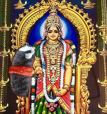 Kanyakumari Devi Holy Temple Relic - POWER MONEY CONTROL GOOD LUCK PROTECTION