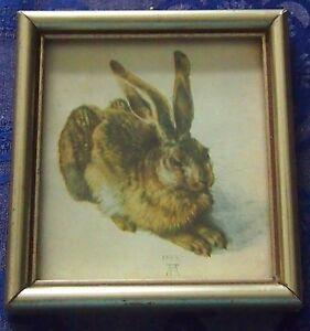 Schönes altes kleines Bild, Motiv Hase ,Alfred Dürer