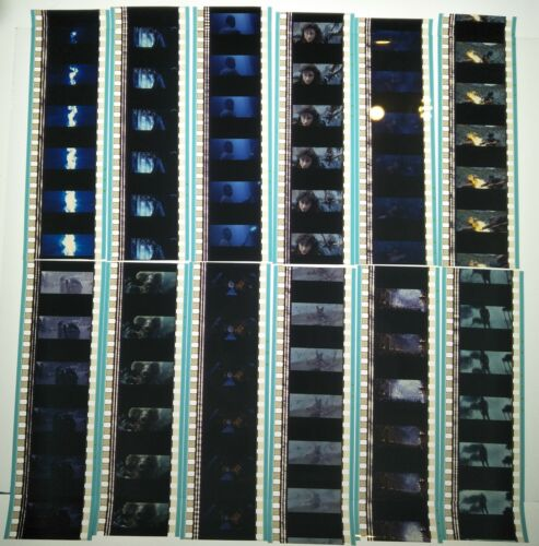 Harry Potter & The Goblet Of Fire 60 x 35mm Genuine Film Cells 12 x Strips (D)