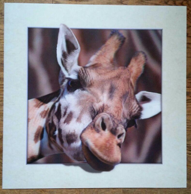 Giraffe lenticular poster print