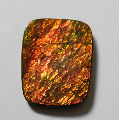 55.30 Cts Natural Canadian Ammolite Cabochon Loose Gemstone 36X27X4 MM A01-06