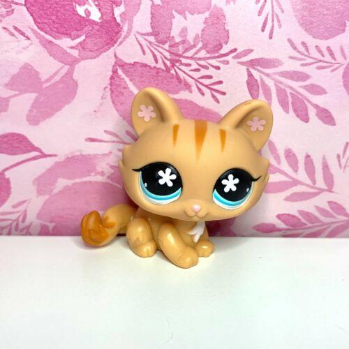🦋AUTHENTIC LPS Littlest Pet Shop #649 Orange Crouching Kitty Cat Blue Flower🦋