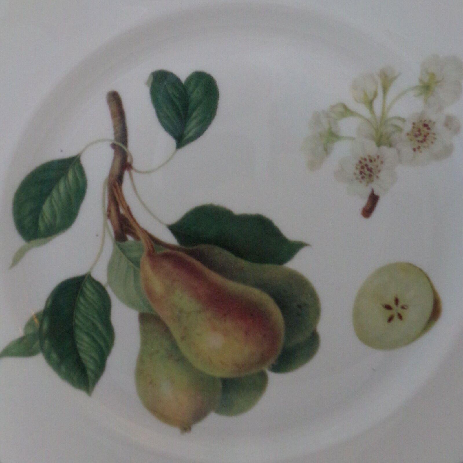 Rosina-Queen s Hooker s Fruit 8.5 Salad Plate Pear Flower Bone-China - $8.00