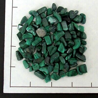 Green Malachite Chip (MALACHITE CHIPS 7-15mm semi-tumbled 1/4 lb bulk stones green, patterns  )