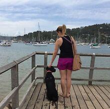 Dog Walker West Ryde Ryde Area Preview