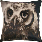 Owl Bedroom Decorative Cushion Covers