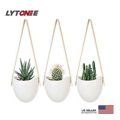 Set Of 3 Elegant Modern Hanging Ceramic Planter, Wall Planter Flower Cactus Pot